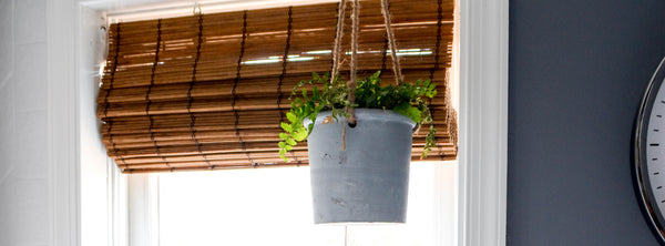 Hanging Planter and a Bathroom Facelift