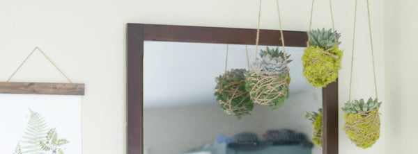 Hanging Succulents DIY