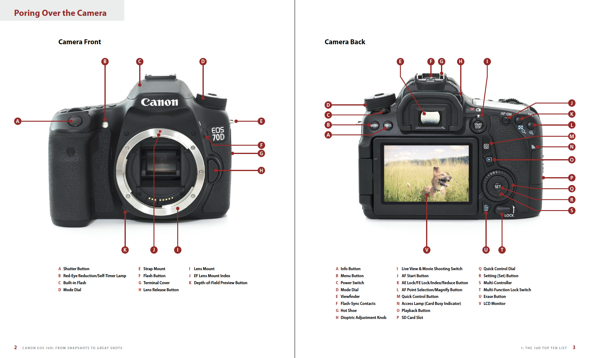 Canon EOS 70D: From Snapshots to Great Shots - Nicolesy Store