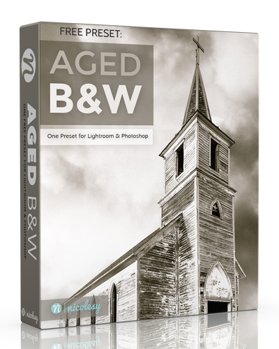 Free Lightroom Preset: Aged B&W