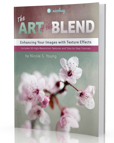 The Art of the Blend <br>(Nicolesy Print Book)