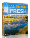Free Lightroom Preset: Autumn Fresh