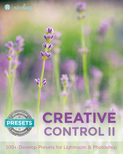 Nicolesy Lightroom Presets: Creative Control (Bundle)