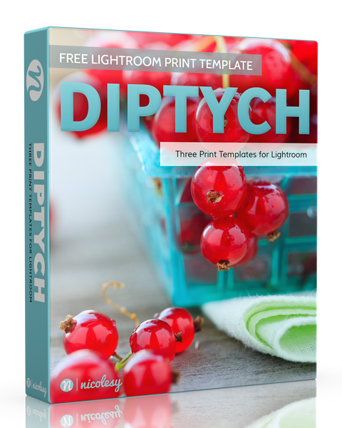 Free Lightroom Print Template: Diptychs