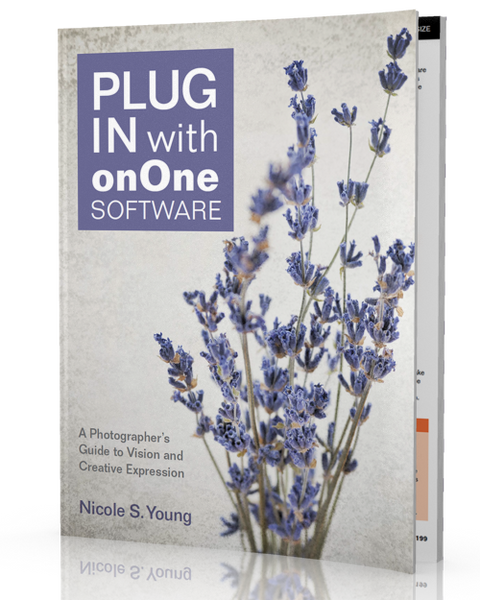 <b>Plug In with onOne Software</b> <br>(Perfect Photo Suite 7)