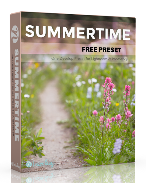 Free Lightroom Preset: Summertime