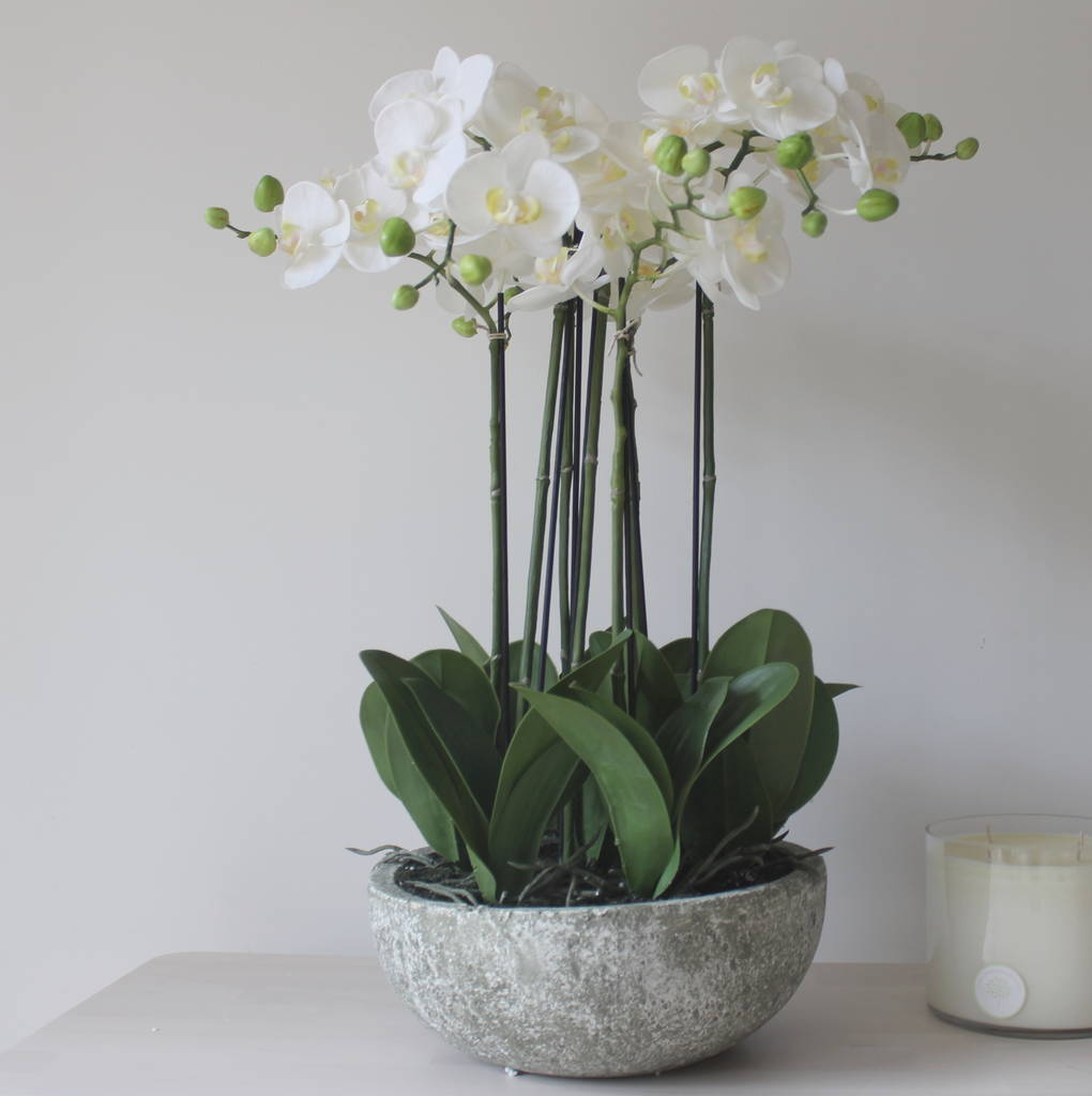 Large Luxury Artificial Potted Orchid Plant