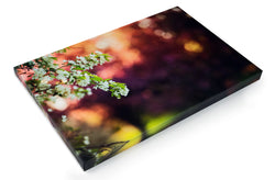 Fine Art Canvas Wraps