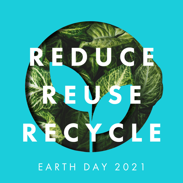 Back to Basics for Earth Day