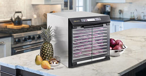Stainless 10tray Excalibur Dehydrator: NZ distributor, FREE SHIPPING