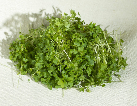 Mustard lettuce seeds:  100gm