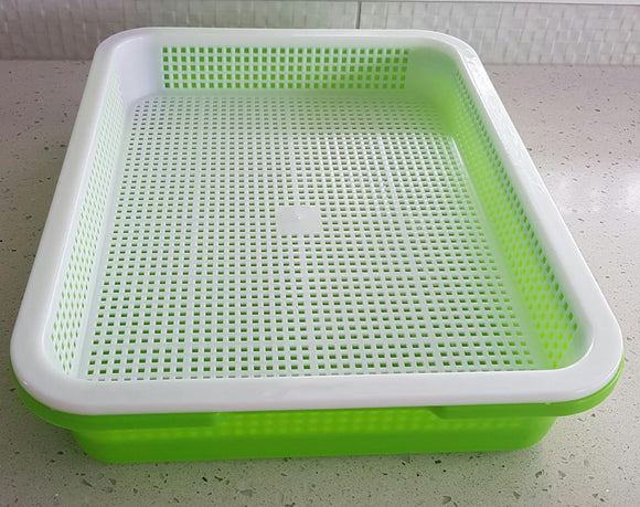 Sprouting or microgreens kit.  BPA free