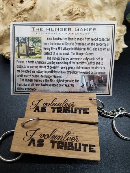 Hunger Games Katniss House Keychain