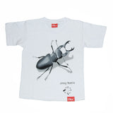 50% Sale - White T-shirts
