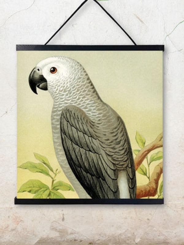 Poster Grey Parrot - , Poster, Vanilla Fly [Kavel 84 woonwinkel Waalwijk], [variant_title], [option1], [option2], [option3]