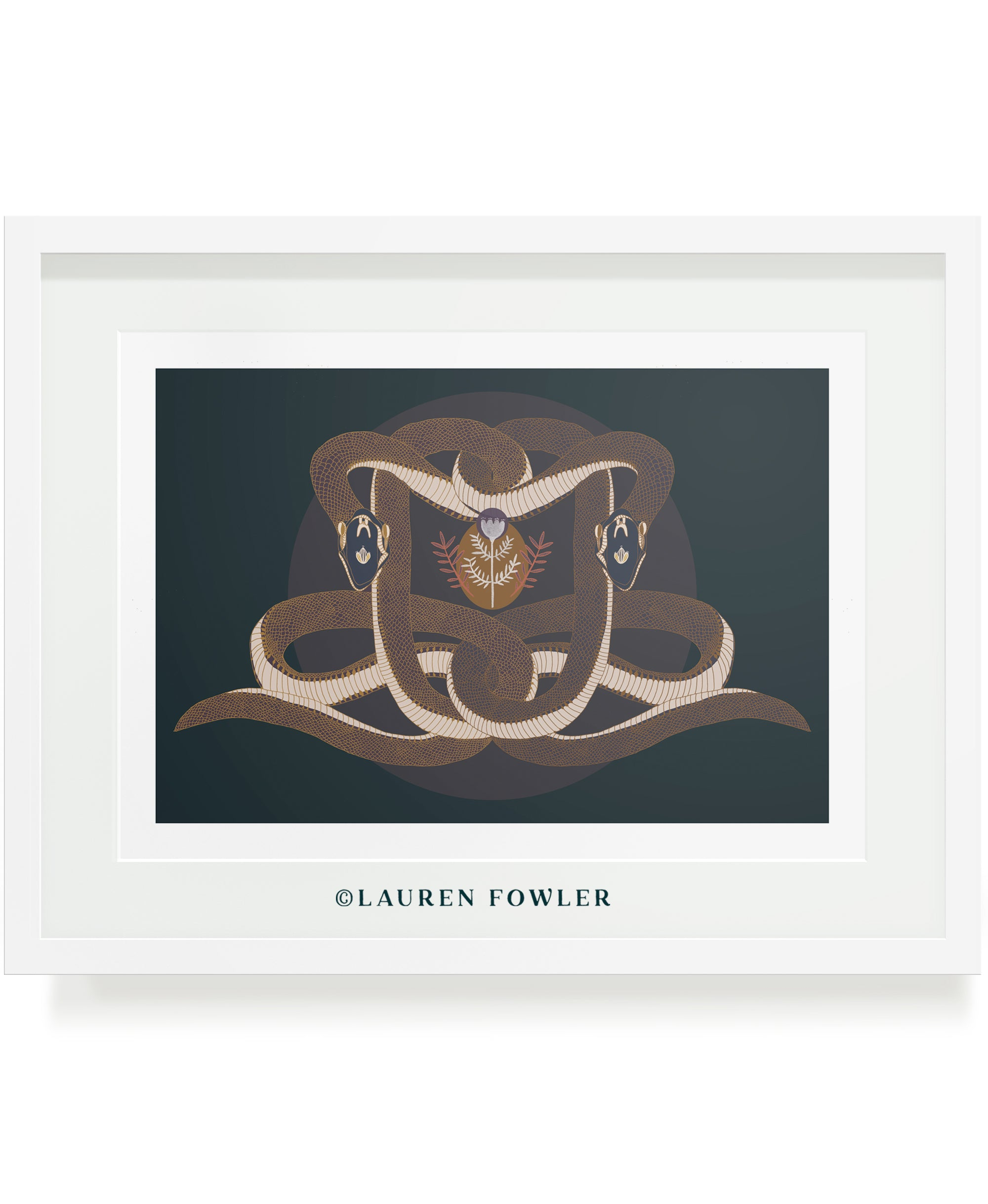 Intertwined illustrated artwork two snakes and flowers by Lauren Fowler
