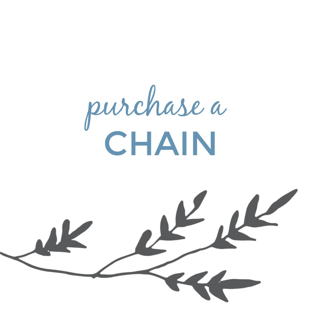 Purchase a Replacement Chain