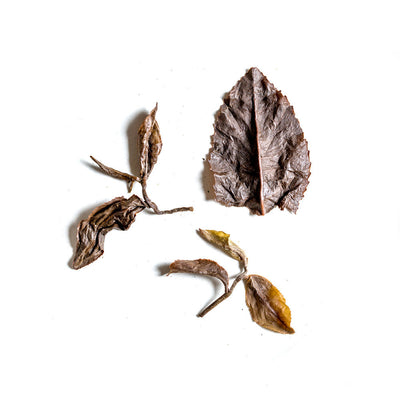 GABA Oolong Tea Leaves (4374098935869)