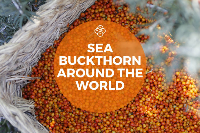 Sea Buckthorn Around the World