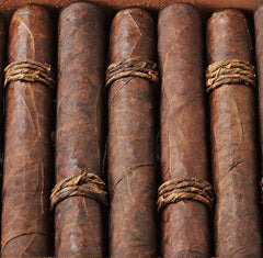 CAO Amazon Basin - 5 Pack  *Original Release*