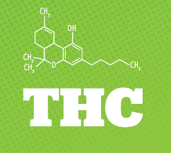 THC Based Products