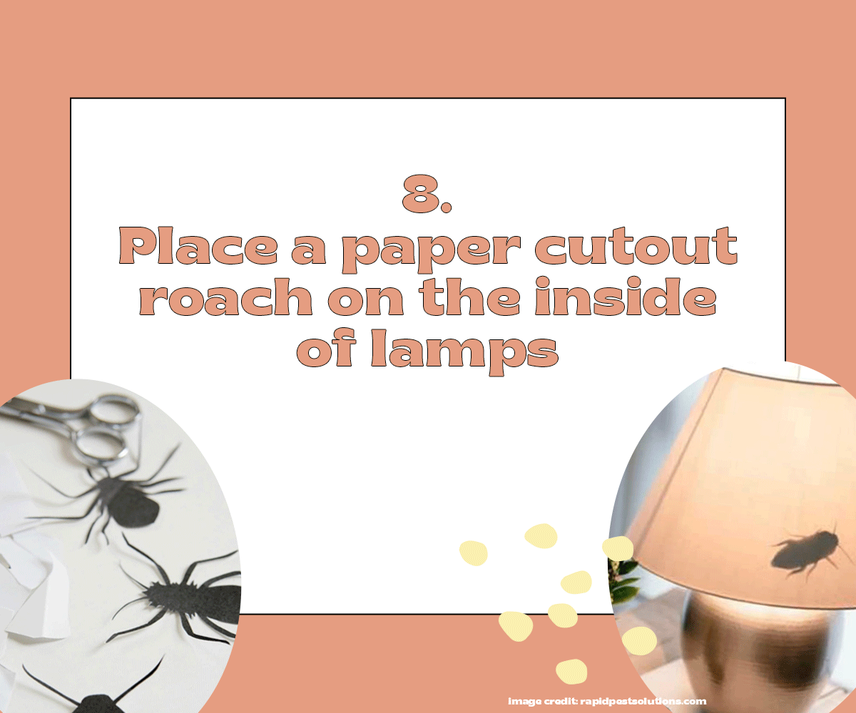 Place a paper cutout roach on the inside of lamps