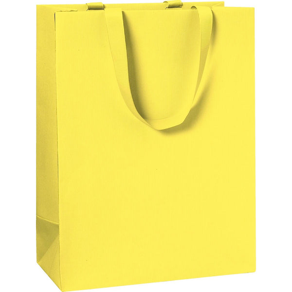 Plain Colour Large Gift Bags 25x13x33cm