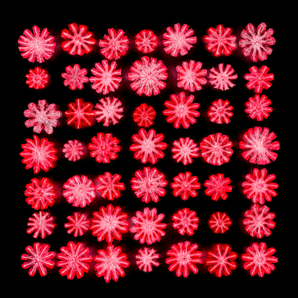 Rosette 22. Variations on a theme.