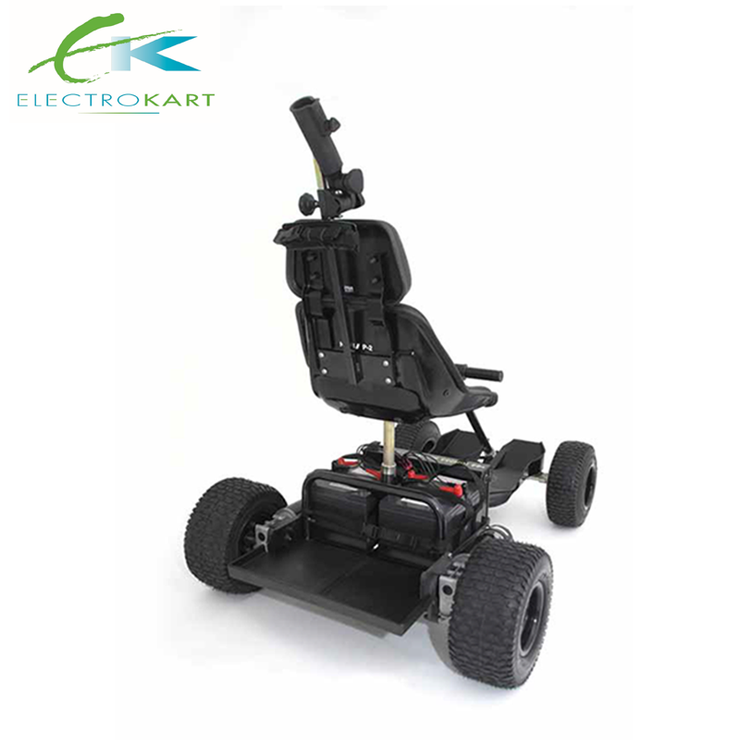 Electrokart Voyager Standard Rear Angle