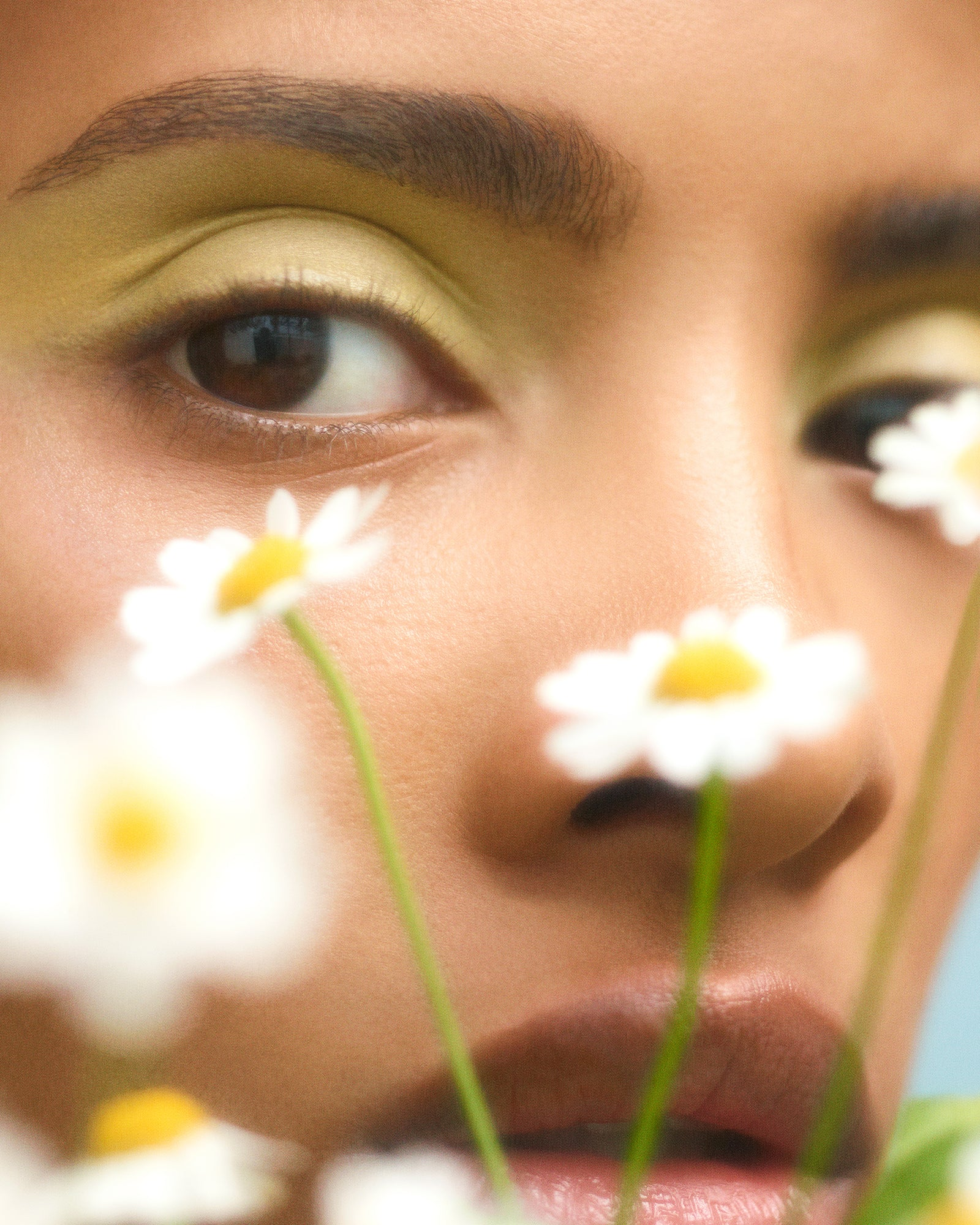 woman's face behind daisies