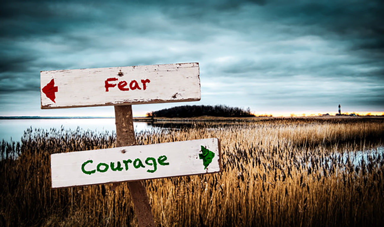 fear or courage signs