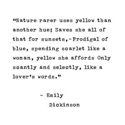 A poem by Emily Dickinson