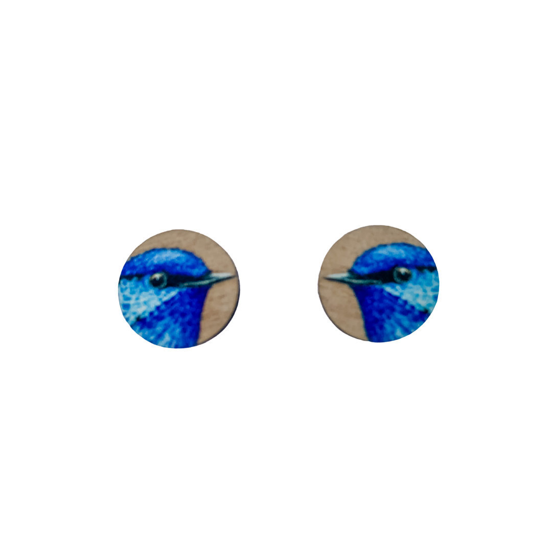 Native blue fairy wren timber earrings