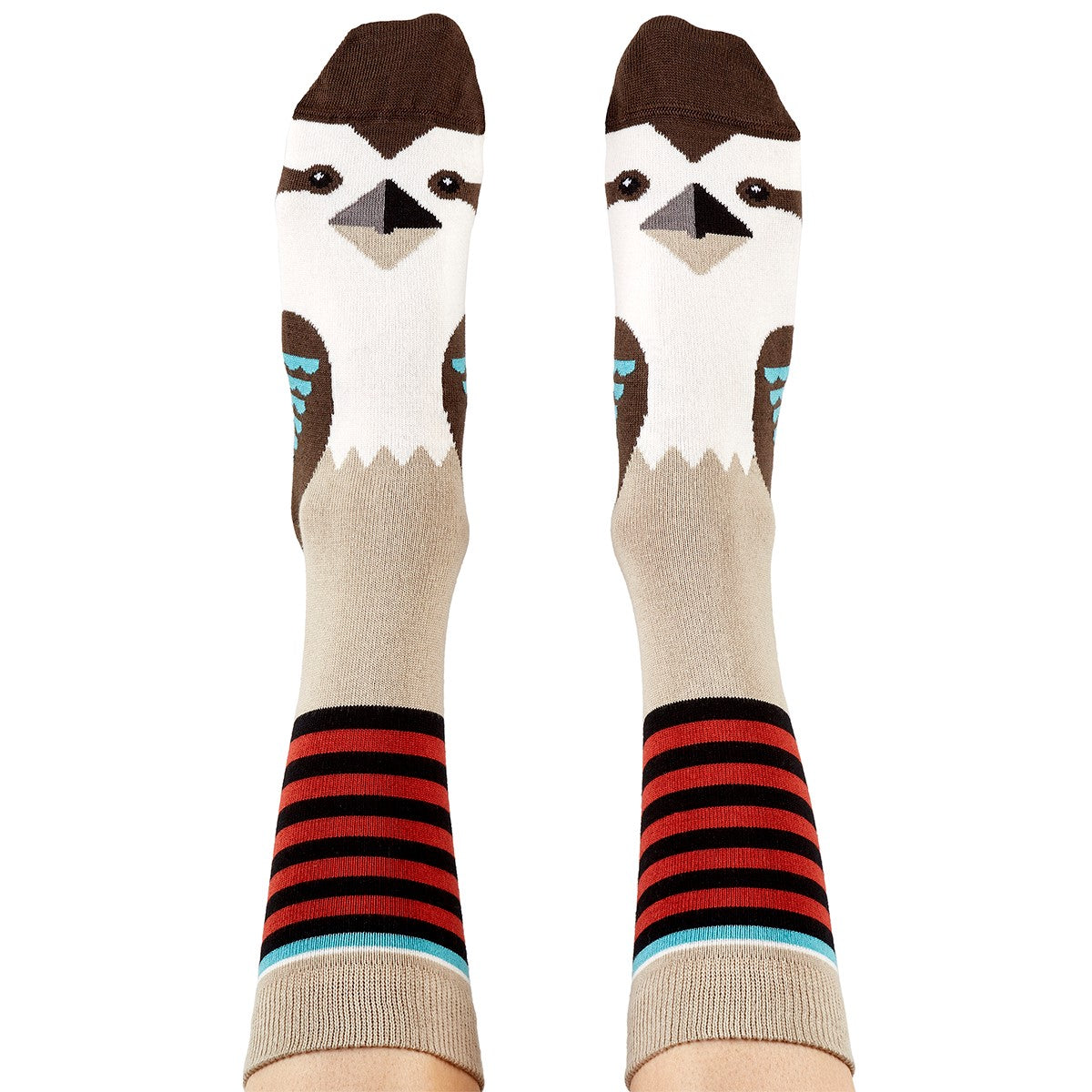 Kookaburra Socks - Stylish Australiana - Ethical Australian Gifts and Souvenirs