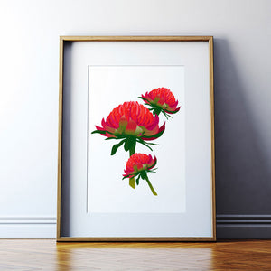 Waratah A3 Art Print - Stylish Australiana - Ethical Australian Gifts and Souvenirs