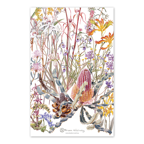 Australian wild flowers gift tea towel