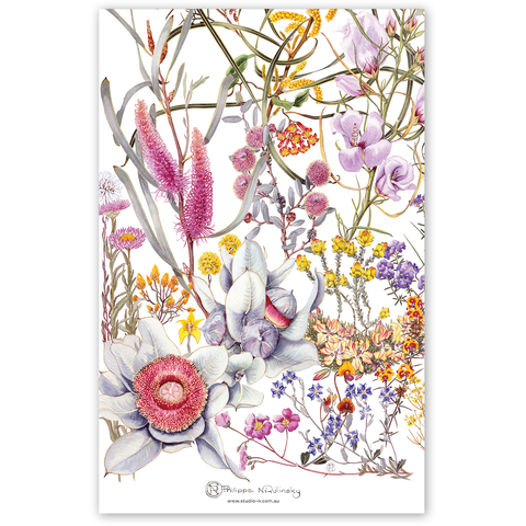 australian art tea towel gift stylish australiana