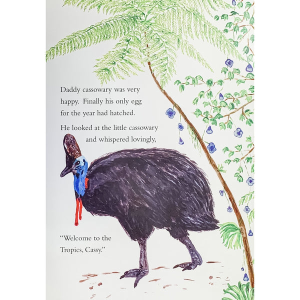 Daddy and baby cassowary story far north queensland rainforest childrens book