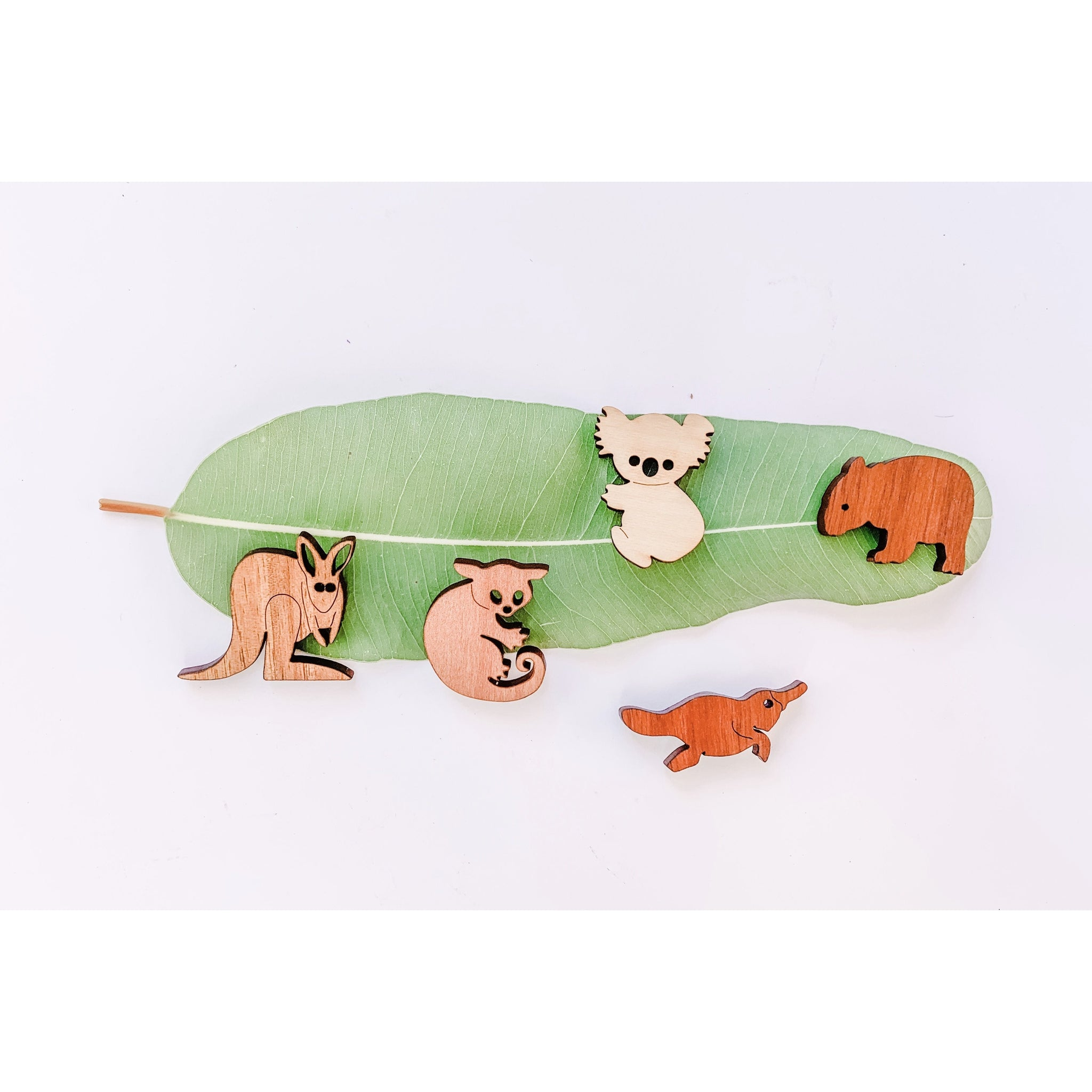 Wooden Australian animal magnet set