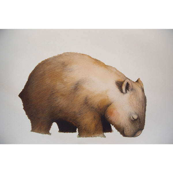 Life sized wombat fabric wall sticker - Stylish Australiana - Ethical Australian Gifts and Souvenirs