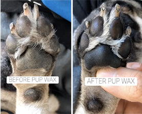 before and after Pup Wax