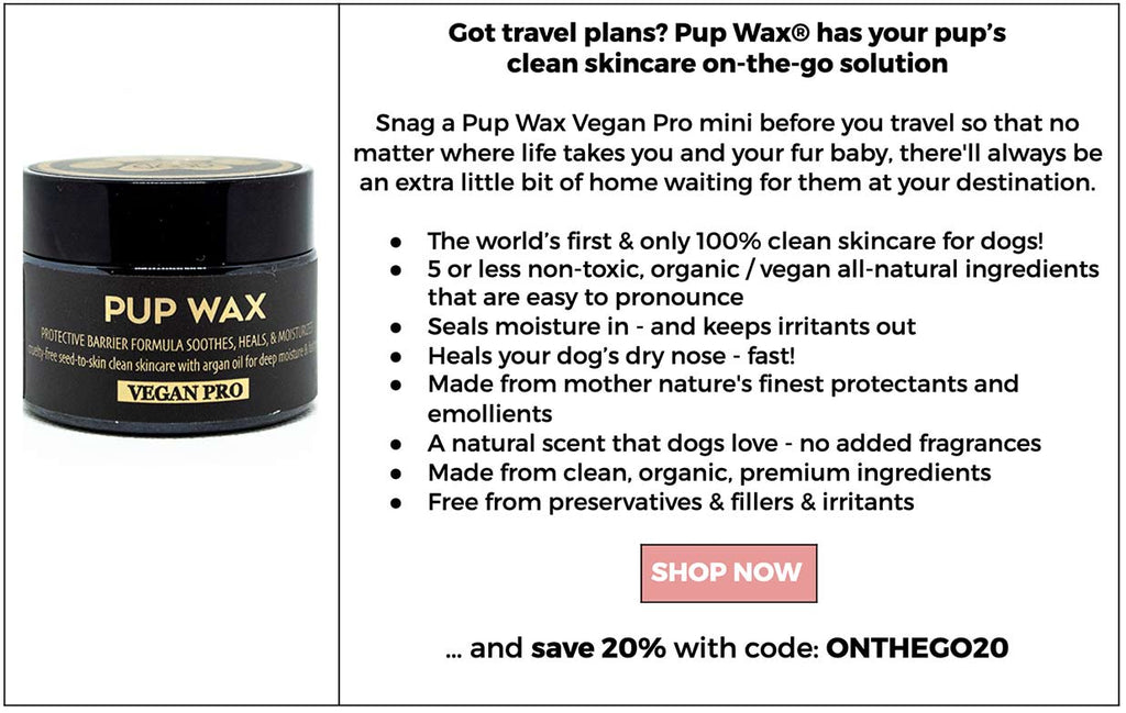 Shop Pup Wax minis to protect your dog who travels on the go