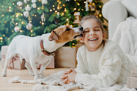girl licked by dog in front of christmas tree