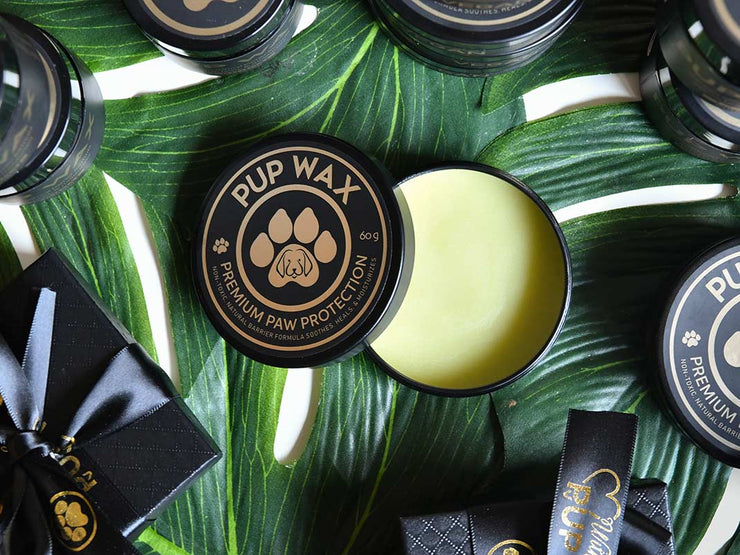 Pup Wax Vegan Dog Nose and Paw Balm - Pup Wax dog paw wax and dry dog nose balm