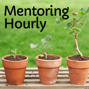 Mentoring Hourly