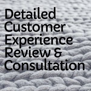 Detailed Customer Experience Review & Consultation