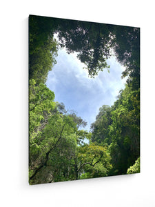 Poly Canvas Print - Trees Heart