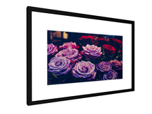 Load image into Gallery viewer, Framed print - Smooth - Roses