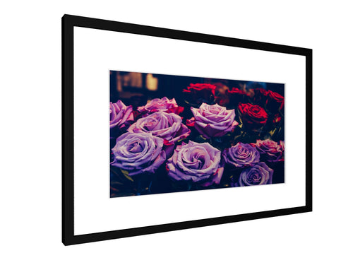 Framed print - Smooth - Roses