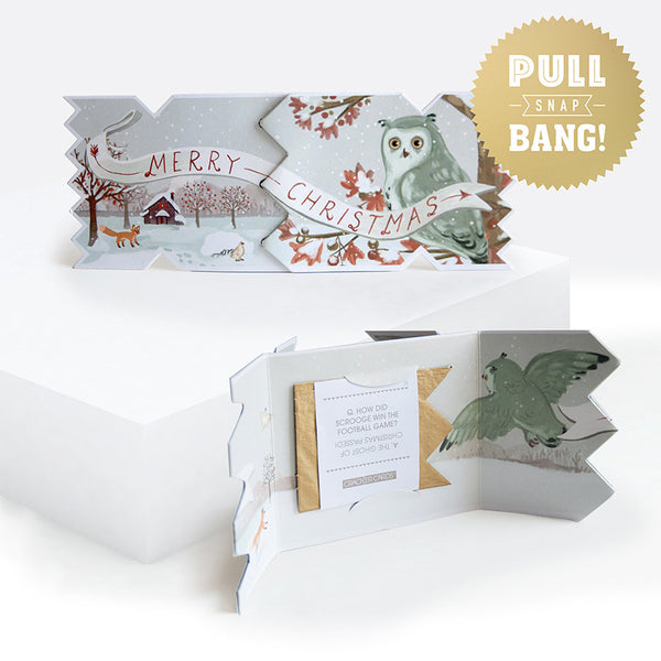 Winter Woodland Owl Christmas Cracker Card